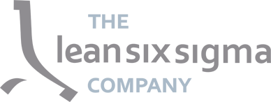 The Lean Six Sigma Company